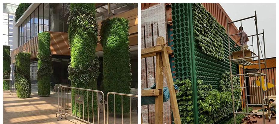 成都办公室绿植墙