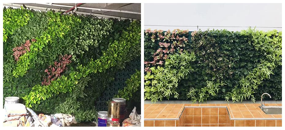 成都大型绿植墙