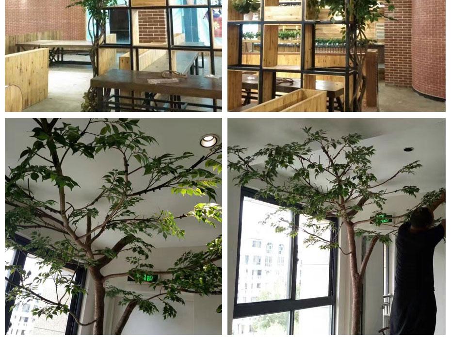 成都室外仿真榕树