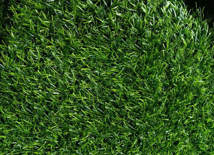 仁寿人工草坪