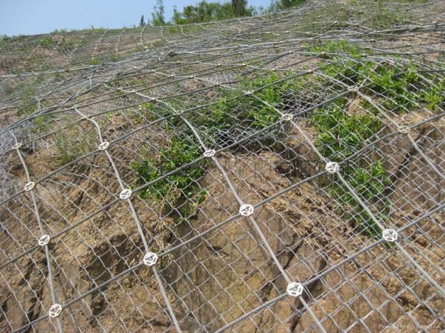 边坡防护网特点