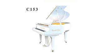 卡文迪C153
