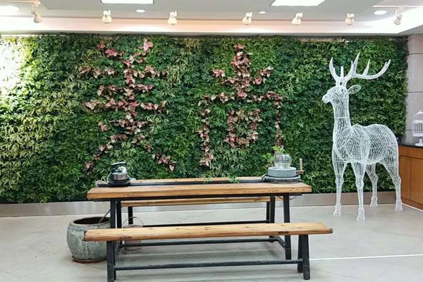 绿化植物墙
