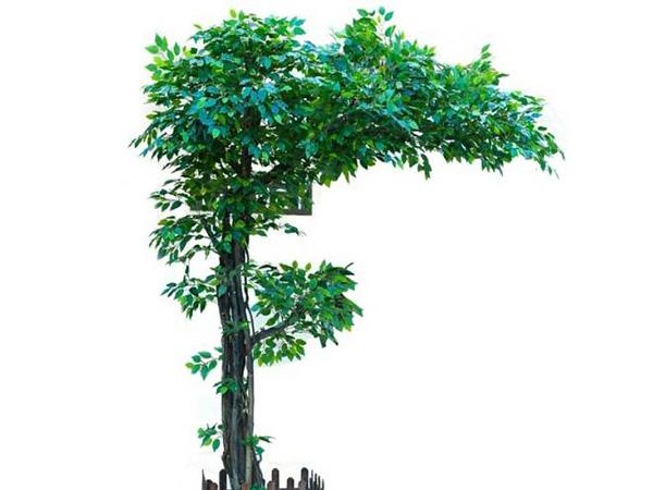 仿真大叶榕树