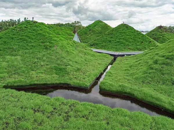 重型绿化屋顶