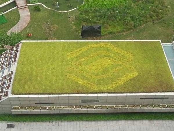 草坪式屋顶绿化