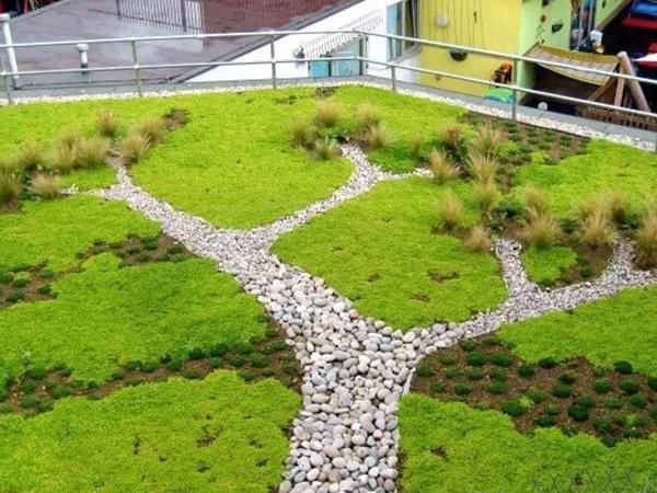 住宅屋顶绿化