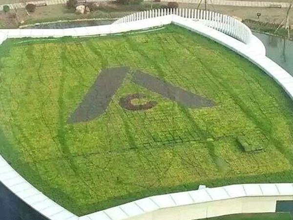 屋顶绿化草皮