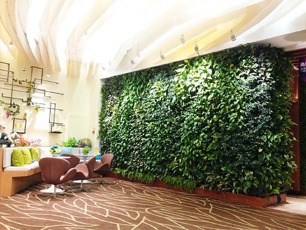 仿真立体植物墙