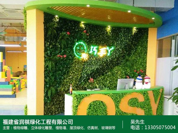 福州绿化植物墙