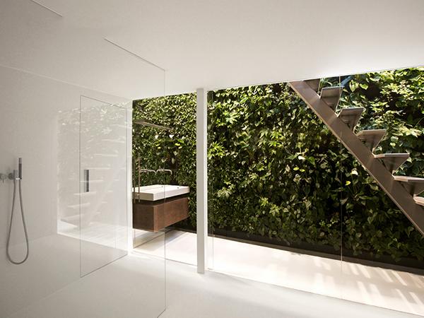 生态植物墙施工