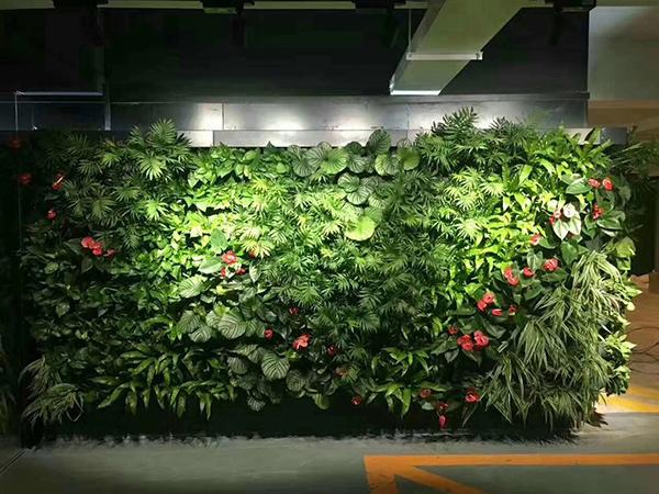 绿植隔断墙