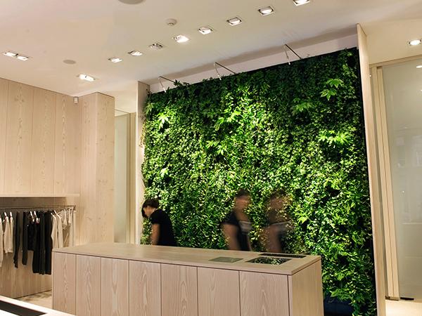 植物墙屏风