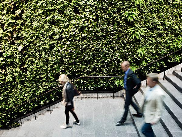 植物墙装饰墙