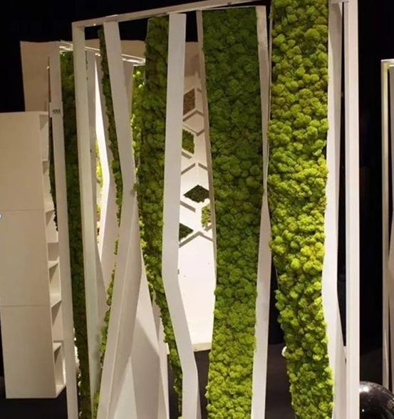 福州植物墙