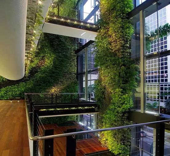 福州垂直绿化