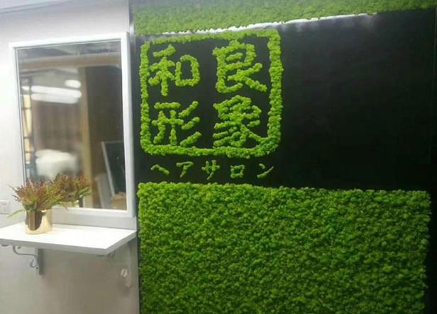 福州仿真植物墙