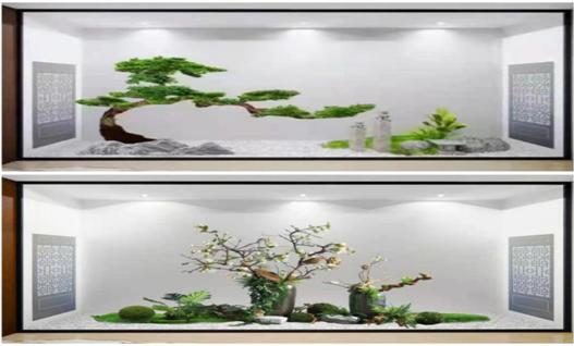 福州植物造景