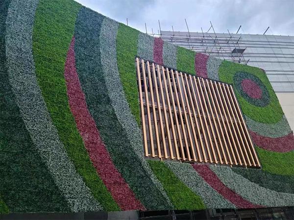立体植物墙