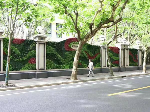 室外垂直绿化植物墙