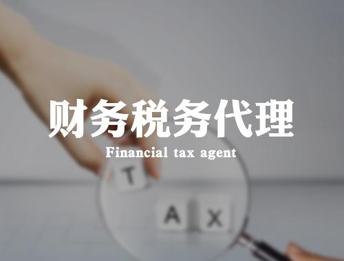 财务税务代理