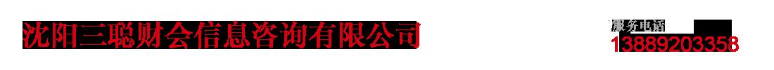 沈阳三聪财会信息咨询有限公司_Logo