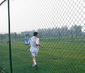 足球场护栏网