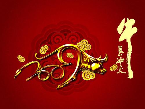 福建省申伯仕门业有限公司祝大家牛年快乐!