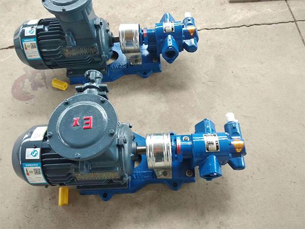 CY200齿轮油泵