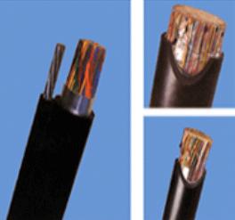 成都防白蚁防鼠电缆FRLS-YJV
