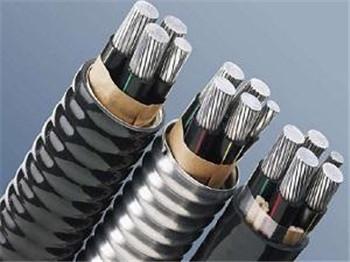 铝合金电缆规格型号