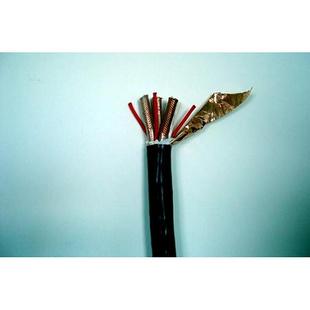 氟塑料高温电缆厂家