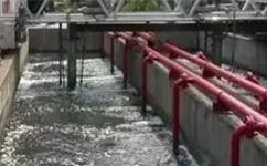 山东污泥脱水机