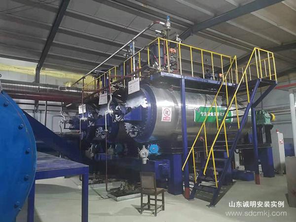 日处理30吨无害化处理设备项目