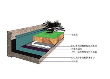 地下室虹吸排水系统