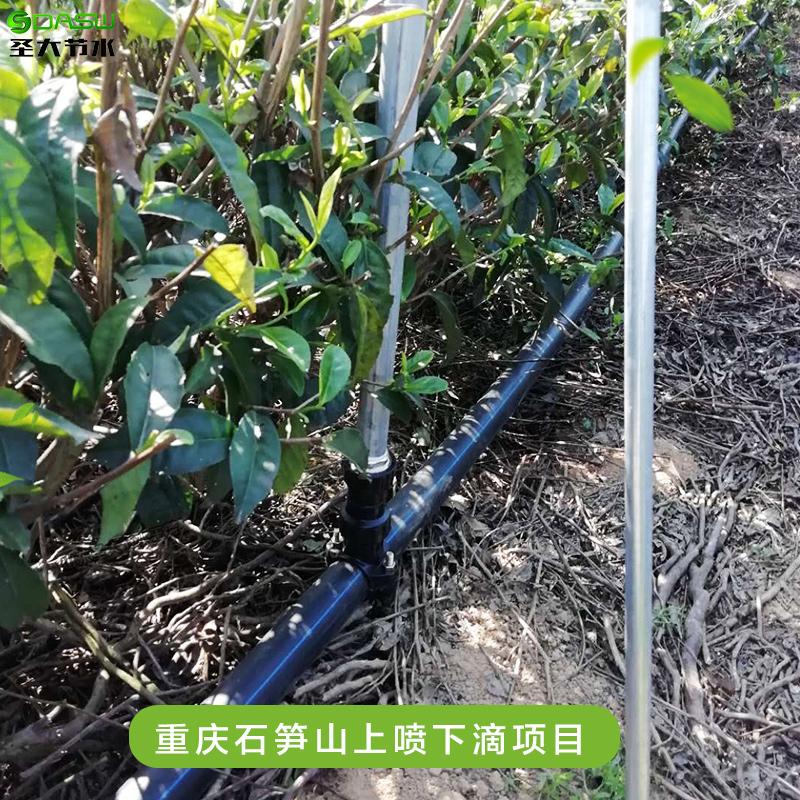 重庆石笋山上喷下滴项目施工 茶园节水灌溉水肥一体化施肥机型号
