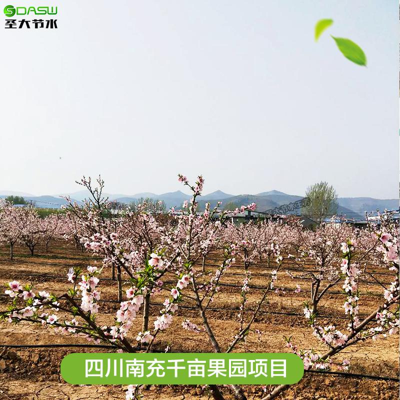 四川南充千亩果园项目 山东圣大节水提供水肥一体化灌溉设备方案