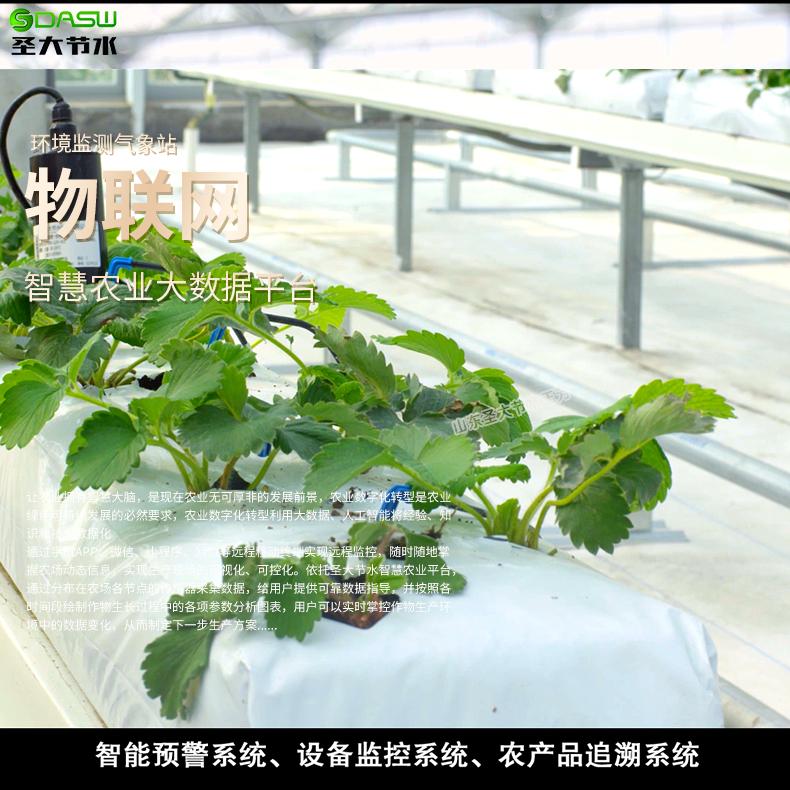 滴灌水肥一体化技术的优点
