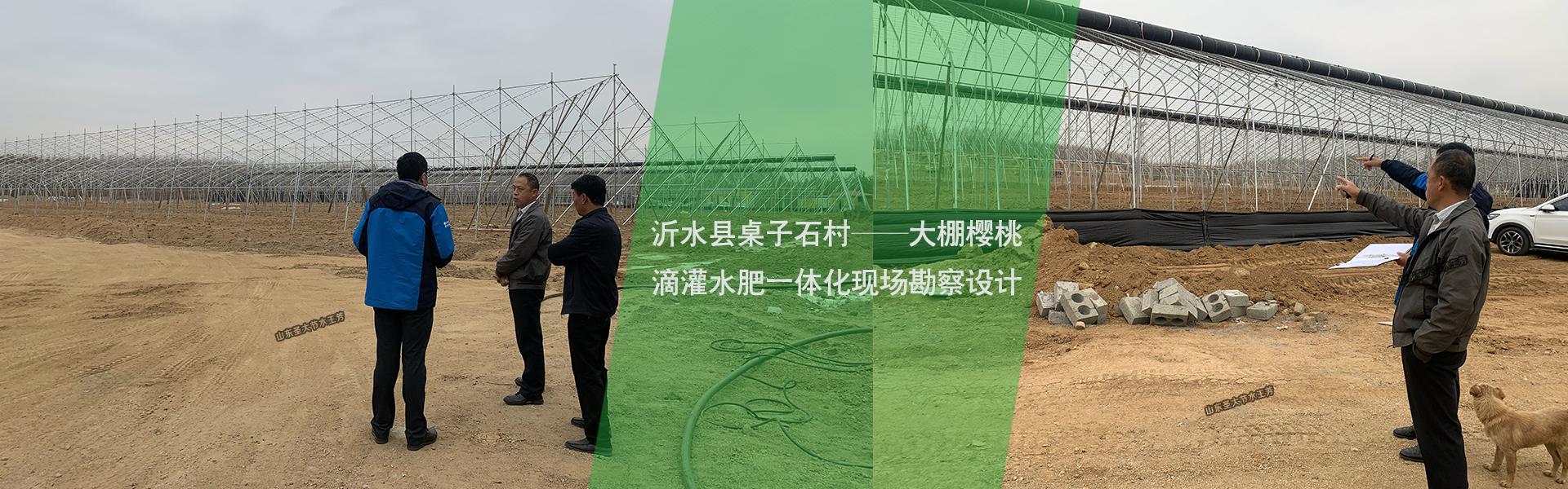 沂南大棚樱桃滴灌水肥一体化方案设计