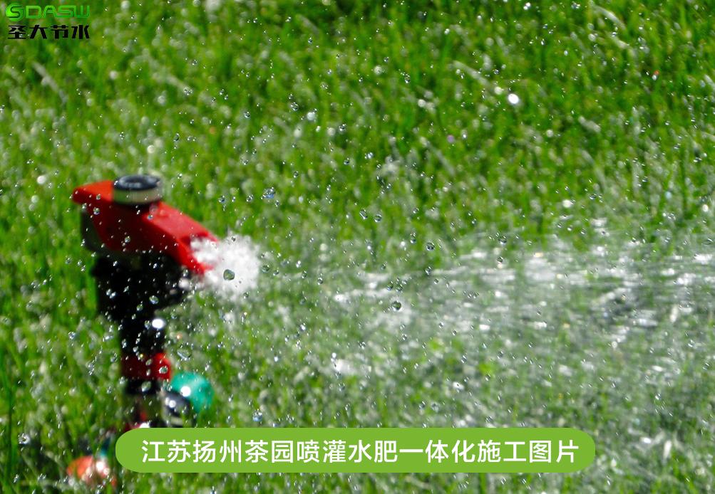 江苏扬州茶园喷灌水肥一体化施工案例-十大网赌信誉平台_澳门十大正规平台