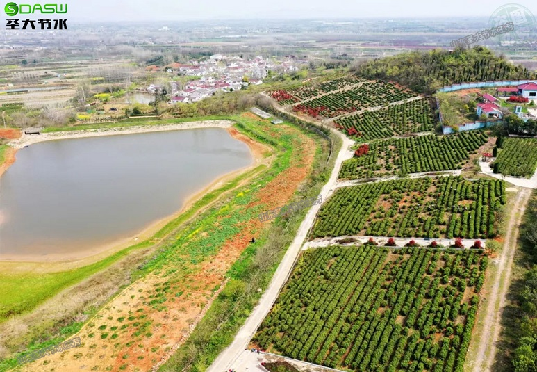 江苏九华村茶园喷灌水肥一体化方案设计