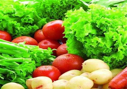 重庆蔬菜批发