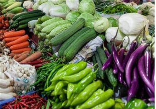 重庆蔬菜配送蔬菜保鲜与防损