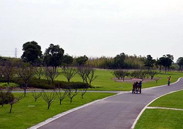 金仓湖公园海绵城市生态多孔纤维棉改造工程
