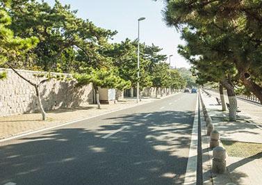 广州金华小区海绵城市生态多孔纤维棉改造工程