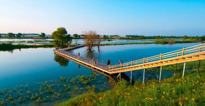 辽河七星湿地公园2万亩沈北这里风景独好