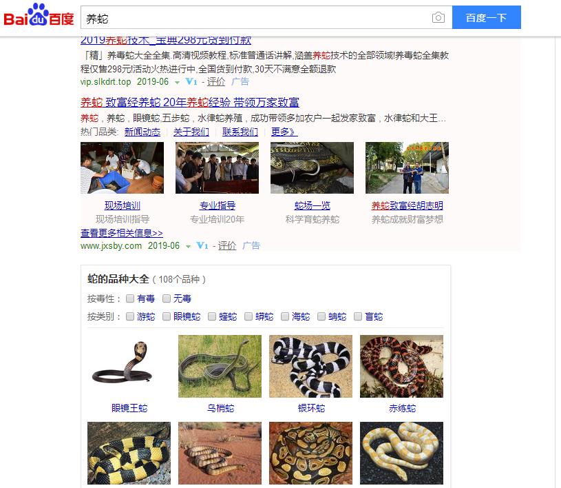 """网站优化的2个字关键词""""养蛇""""霸占首页"""