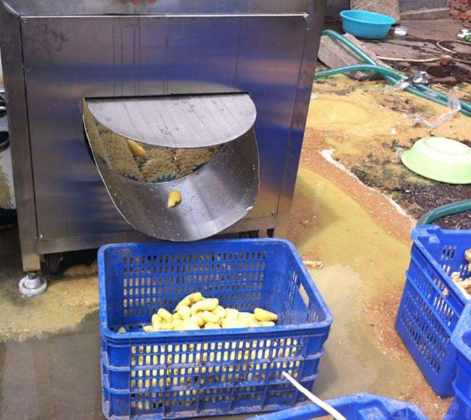 气泡式大姜清洗机