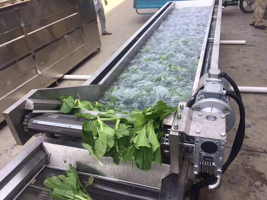蔬菜清洗机在人们生活中的作用日益显著