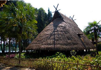 特色木质建筑